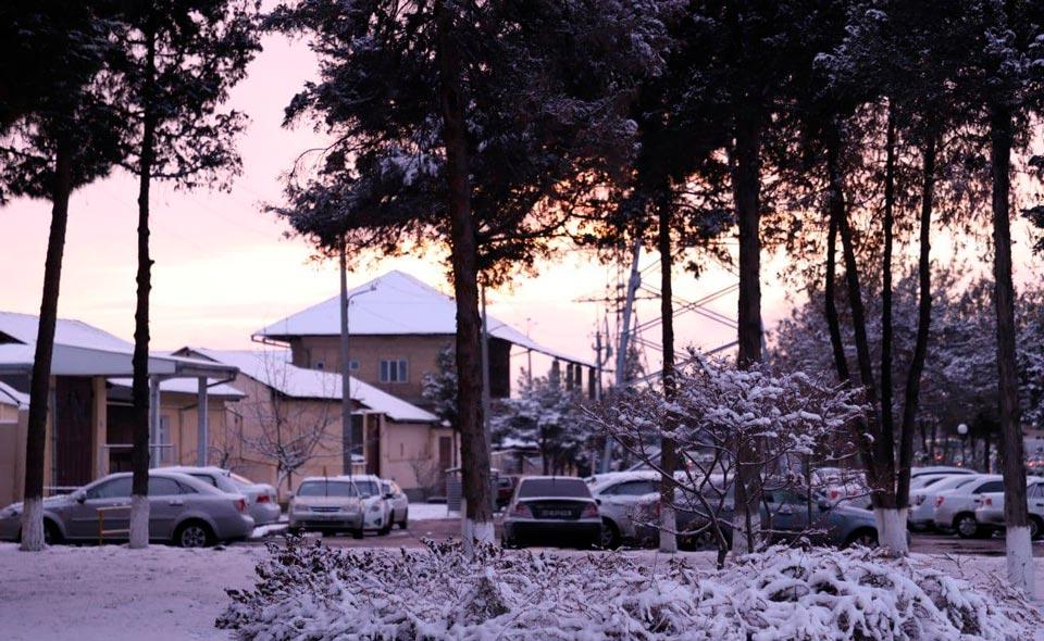 Резкое похолодание и снег. Узгидромет рассказал о погоде на неделе